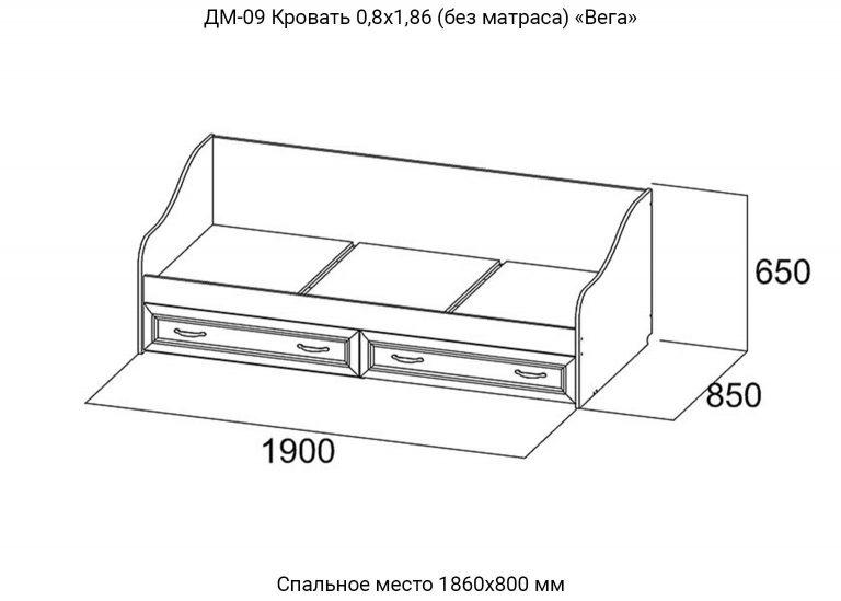 Детская Вега ДМ-09 Кровать 0,8х1,86 схема SV-Мебель
